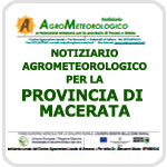 ASSAM - Supplementi - Speciali - Macerata